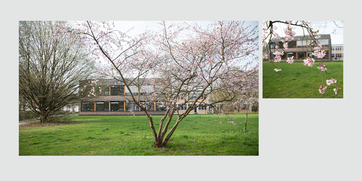 projektgruppe-thrs-fotolayout-praesentation-04